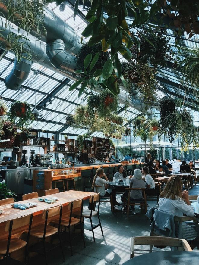 دکور منحصربهفرد یک رستوران با گلها و گیاهان