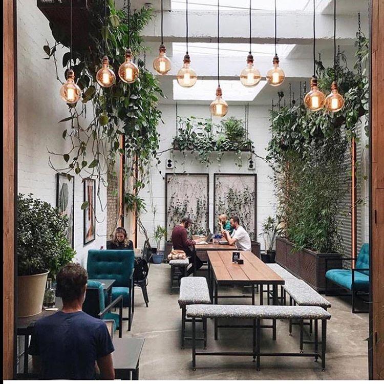 گل و گیاه و چراغ های صنعتی ترکیبی جالب برای ایجاد محیطی خلاقانه